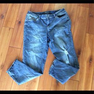 Cato premium Contemporary Jeans size 14 x 29